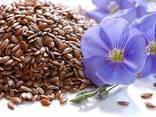 Fazole, lněná semena, čočka, cizrna, hrášek a jiné zemědělské produkty. - photo 3