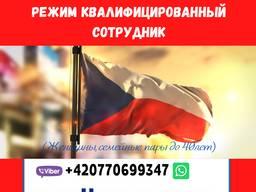 Оформление 2 годовых виз в Чехию через Режим Квалифицированный сотрудник