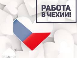 Рабочая виза в Чехию на 3 месяца без привязки к работе